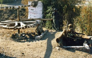 Ägyptischer Eimerkettenbrunnen mit hölzernem Zahnrad. Brunnen auf der dem Wetufer des Nils, gegenüber Luxor